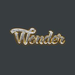 Wonder Casino Logo