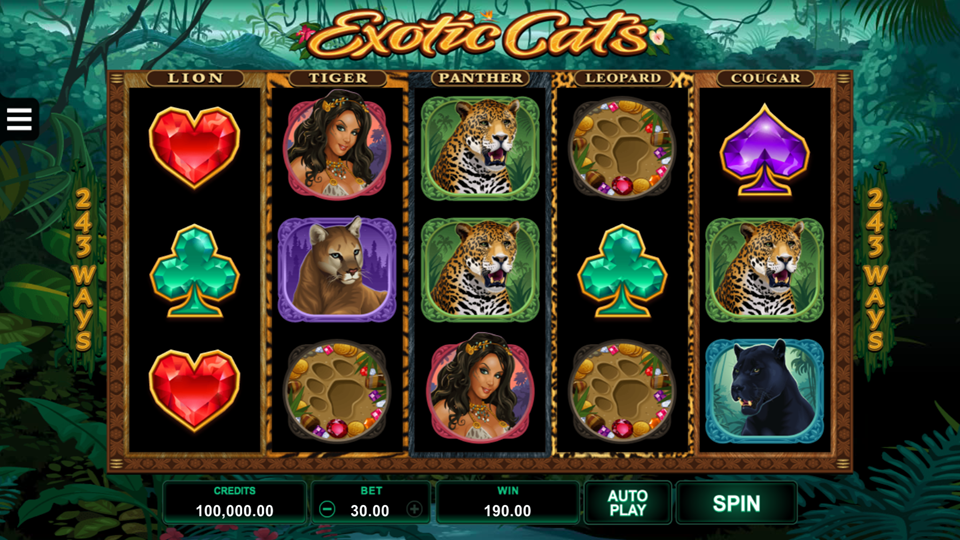 Slot cats