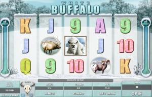 White Buffalo Slot Review