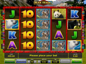 Bear Tracks Slot Review