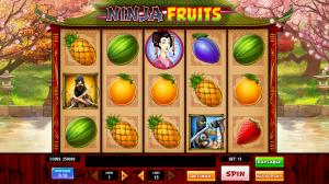 Ninja Fruits Slot Review