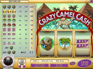 Crazy Camel Cash Slot Review