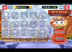 Way Of The Slot Slot Review