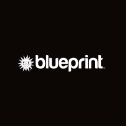 Blueprint Gaming Casinos